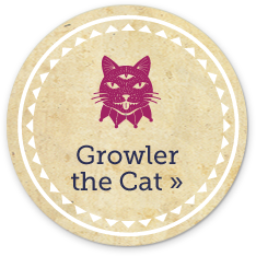 Growler the Cat